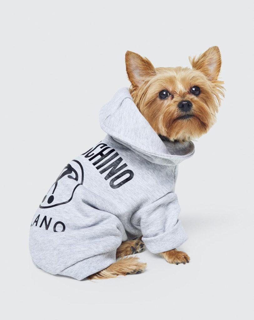 Le sweat-shirt en molleton signé Moschino x H&M, idéal pour les siestes dans notre panier doré.